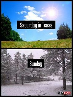Went to bed Saturday night in Tyler, TX at 78 degrees, woke up Sunday to 40 degrees, drove home to Houston to meet 80 degrees again. Supposed to be 30 degrees Monday morning here in Houston! Living in Texas in February is very frustrating! Texas Quotes, Eyes Of Texas, Texas Humor, Texas Funny, Funny Weather, Texas Weather, Only In Texas, Republic Of Texas, Loving Texas