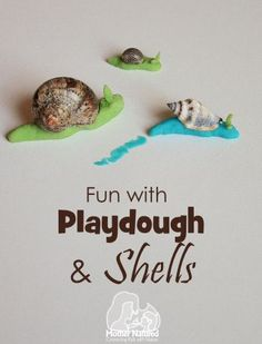 Playdough and shell craft - set up as an invitation to play with one done? Playdough Activities, Toddler Activities, Preschool Activities, Insect Activities, Preschool Centers, Art For Kids, Crafts For Kids, 4 Kids, Children