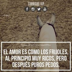 Jajajja y si.!!   ____________________ #teamcorridosvip #corridosvip #corridosybanda #corridos #quotes #regionalmexicano #frasesvip #promotion #promo #corridosgram