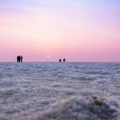 The Rann of Kutch, otherwise called the Great Rann of Kutch (there's a Little Rann of Kutch too), is a striking spot to visit in Gujarat. A lot of it comprises one of the world's biggest salt desert, estimating around 10,000 square kilometers (3,800 square miles).  Makes it significantly additionally astounding that the salt desert is submerged during the principal storm season in India. For the leftover eight months of it, it's a tremendous stretch of pressed white salt. Tourist Places TOURIST PLACES : PHOTO / CONTENTS  FROM  IN.PINTEREST.COM #TRAVEL #EDUCRATSWEB