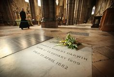 Charles Darwin - Westminster Abbey in London, England.