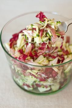 insalatona-sfiziosa-speck-mele-radicchio-e-zucchine ♦๏~✿✿✿~☼๏♥๏花✨✿写☆☀🌸🌿🎄🎄🎄❁~⊱✿ღ~❥༺♡༻🌺MO Dec ♥⛩⚘☮️ ❋ Easy Cooking, Cooking Recipes, Vegetarian Recipes, Healthy Recipes, Healthy Snacks, Light Recipes, Italian Recipes, Love Food, Food Porn
