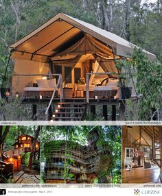 Tree houses, I want one ..