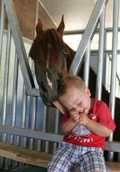 Horse licking his little kid friend, tickle tickle.