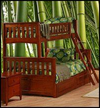 bunk beds are great for the kids and the guest room! - Bunk Beds-rainforest jungle-mural-jungle-theme-bedroom-furniture