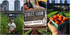 Join us for a Street Farming masterclass on how to make urban farms happen, with Michael Ableman of Sole Food Farms. Practical strategies, design and the nuts-and-bolts of growing serious amounts of fresh food in our cities City Farm, Urban Farming, Master Class, Farms, Cities, Join, Shit Happens, Street, How To Make
