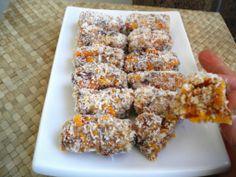 Mango Travel Treats   fastPaleo Primal and Paleo Diet Recipes