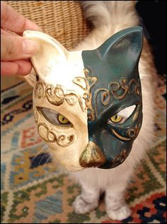 the cat and the cat mask
