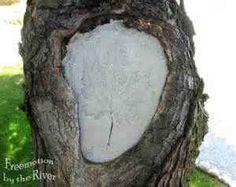 Dog Houses Gum Tree