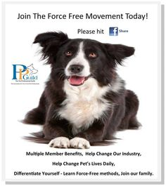 There is no intimidation, pain, fear, or force used on the #pets and #animals in our home. We communicate and work with them using the latest scientific methods.  You can learn why we are a Force Free Family here:http://www.consciouscompanion.com/why-i-am-force-free.html  Learn more from the The Pet Professional Guild here:http://www.petprofessionalguild.com/