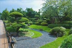 Plants Japanese garden #garden #japanese #plants #japanesegarden