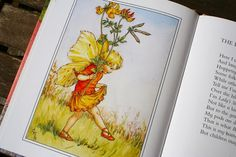 Flower Fairies of the Summer - the Birds Foot Trefoil Flower Fairy