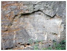 a bear shape in a rock