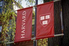 Signage: Harvard University bluerockdesignco.com