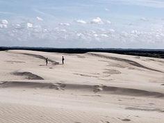 Råbjerg Mile. A huge migrating coastal dune in Northern Denmark...