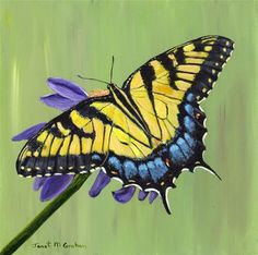 """Tiger Swallowtail"" - Original Fine Art for Sale - © Janet Graham"