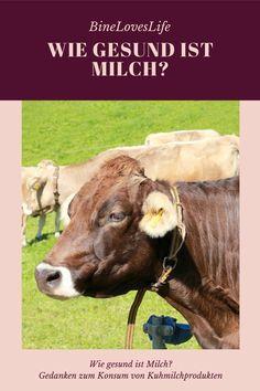 Fakten, Zahlen und alles rund um das weiße Gold Zero, German, Gold, Animals, Deutsch, Cow, Numbers, Mindfulness, Sustainability