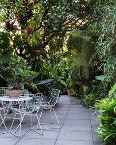 Linda terraza rodeada de vegetación