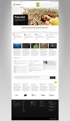 Expression - Responsive Business Wordpress Theme - Business Corporate #wordpress #theme #website #template #responsive #design #webdesign #flat #flatdesign #business