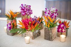 Tropical flower arrangements. Rustic wood vases with opal, bird of paradise, ginger and orchids