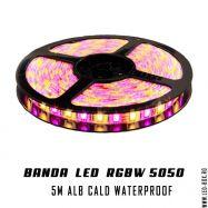 BANDA RGBW 5050 SMD ALB CALD IP65 Lead Boxes, Led, Bands