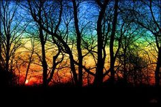 Beautiful Colorful Photography : theBERRY