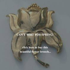 CAN'T WAIT FOR SPRING!     click here to buy this  beautiful flower brooch...