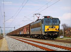 RailPictures.Net Photo: 150 Hungarian State Railways (MÁV) 630 at Békéscsaba, Hungary by Sly77