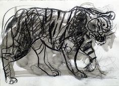 Tiger, kol och tusch, 38x56cm