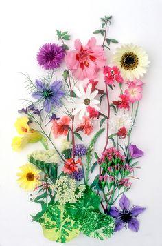 Cute flower pressed arrangement
