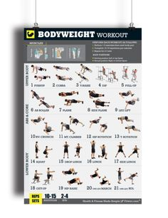 """Bodyweight Workout Exercise Poster for Men 18""""X24"""" Laminated - FITWIRR SHOP"""