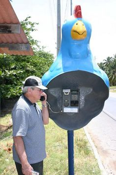 Rooster phone booth