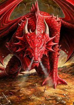 Red Dragon protects hoard - Pathfinder PFRPG DND D&D d20 fantasy