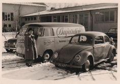 Barndoor van and split window bug