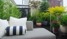 Brooklyn Heights Rooftop Garden << design by Staghorn NYC