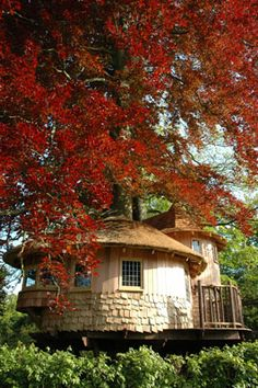 rounded treehouse with turret back view