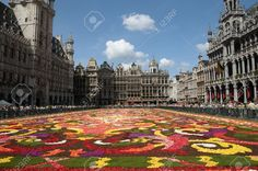 BRUSSELS - AUGUST 16 Flower Carpet - 2008 In Brussels Grand-Place ...