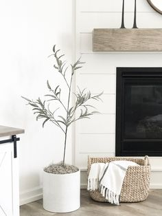 I wanted to share my favorite neutral paint colors because it's something I get asked about often. I also get asked about what stains I use when we do DIY projects. After a lot of trial and error… Behr Paint Colors, Wood Stain Colors, Neutral Paint Colors, Bedroom Paint Colors, Interior Paint Colors, Paint Colors For Home, House Colors, Gray Paint, Interior Plants