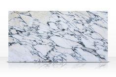 arabescato corchia marble - Google Search