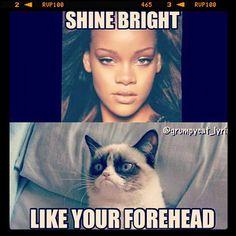 New funny memes hilarious lol grumpy cat 70 Ideas Grumpy Cat Quotes, Funny Grumpy Cat Memes, Cat Jokes, Crazy Funny Memes, Really Funny Memes, Funny Relatable Memes, Funny Cats, Funny Jokes, Cats Humor