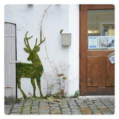 Amazing Moss Graffiti