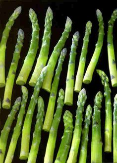Pate de Verre glass asparagus stalks by Kimiake Higuchi