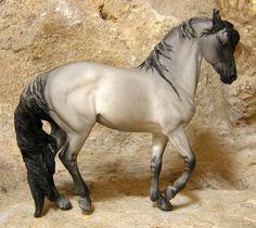 Spanish Mustang (Kiger) Stallion