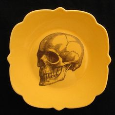Anatomy painted dinner plate - Maureen Sheilds