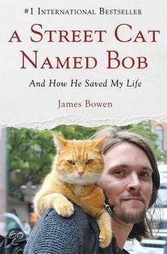 Fantastisch waargebeurd verhaal over iemand die ontspoort. Zijn baan verliest, heroïne junk wordt en probeert met zijn gitaar de kost te verdienen. Dankzij de vriendschap van zijn kat voor hem en de zorg van hem voor zijn kat lukt het hem om weer op te krabbelen.