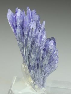 A brilliantly strange formation of Tanzanite crystals from the Merelani Hill diggings, Tanzania. The Zoisite var Tanzanite crystal group displays a parent crystal supporting a number of further crystals grown from one side in a fan-like formation. The Tanzanite crystals are thinly bladed in habit with well formed terminations. The colour is a translucent white at the root of the crystal cluster grading at the terminations to a pastel violet. Size: 4.1 x 1.5 x 1.5 cm