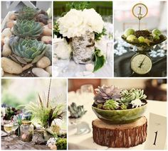 "GUEST BLOGGER | A ""Neutral Chic"" wedding with POPS of color… and SUCCULENTS!! By Naomi of Enchanted Dream Weddings 