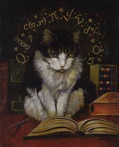 MATHEMATICAL CAT BY LISA ZADOR.  Studying up for future crazy jumps from one impossible angle to another landing spot.