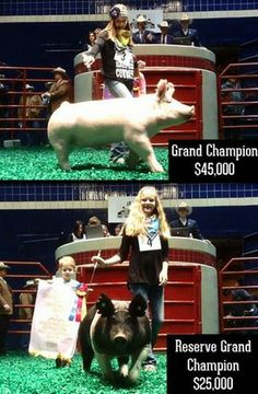 Congratulations to Claire McCormick and Haven Wisdom. Grand Champion Barrow sells for $45,000 and Reserve Grand Champion Barrow sells for $25,000.