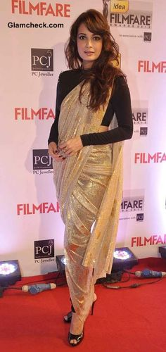 Dia Mirza 2014 Idea Filmfare Awards